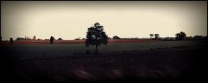 Road trip by Damien Wake