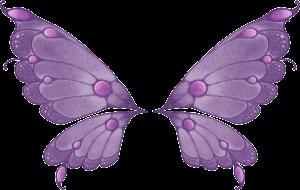 Ailes de papillon